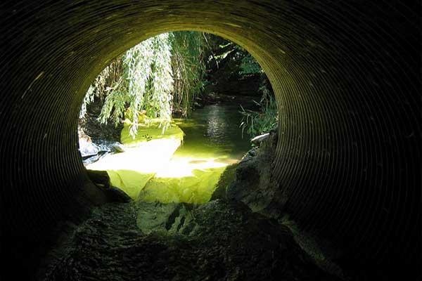 mantenimiento del río cofre de mantenimiento